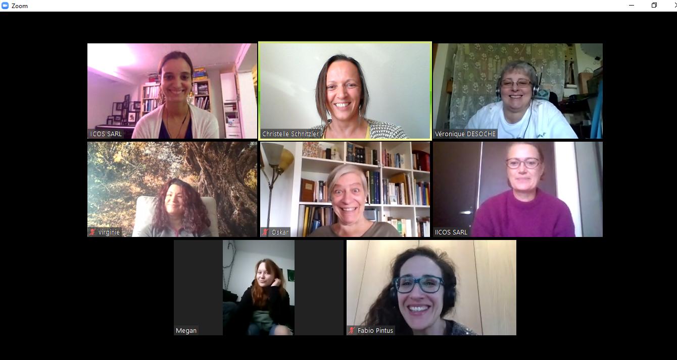 Séances individuelles et travail de groupe en ligne